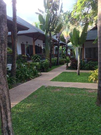Banana Fan Sea Resort: View on way to room