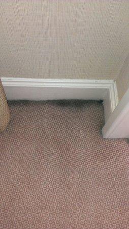 Hilton Edinburgh Grosvenor : Dirty carpet.