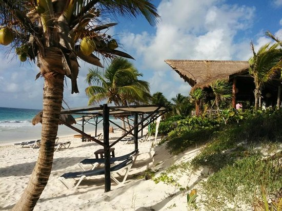 Las Ranitas Eco-boutique Hotel : Beach and Roof of Open Air Restaurant