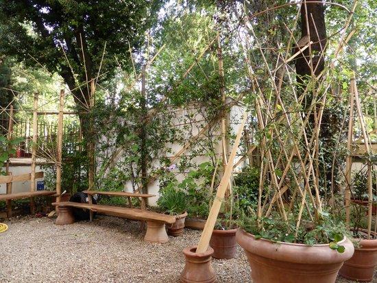 Hotel David : Garden