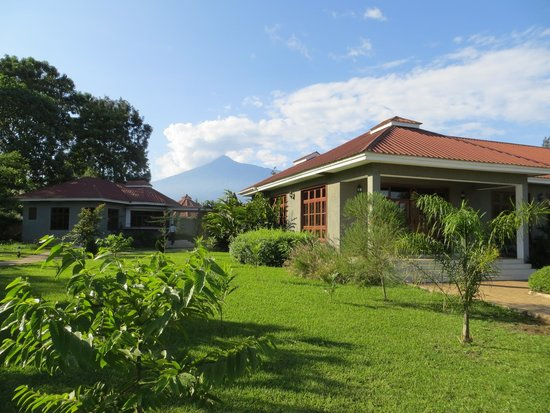 Arusha Planet Lodge : View of Mt. Meru