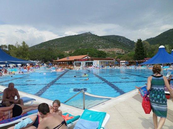 La piscine vivante picture of kustur club holiday for La piscine review