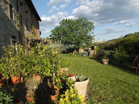 Agriturismo I Pitti: A garden
