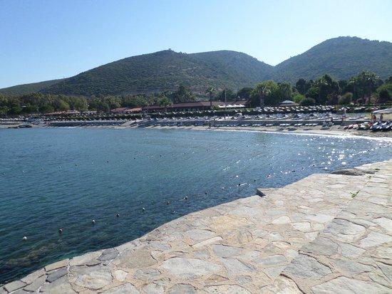 Kustur Club Holiday Village: La plage