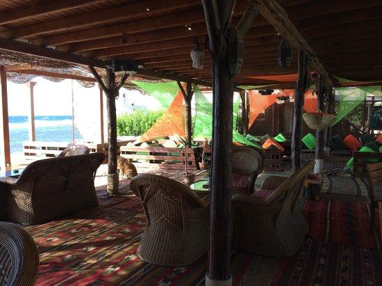 Acacia Dahab Hotel: Restaurant