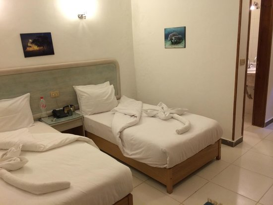 Acacia Dahab Hotel: Room