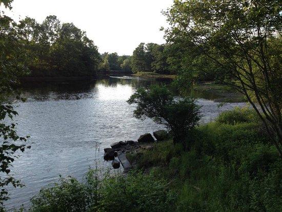 Riverhouse B&B: The view