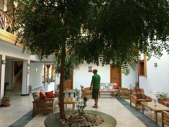 Acacia Dahab Hotel: Reception area