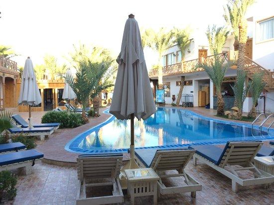 Acacia Dahab Hotel: Pool area
