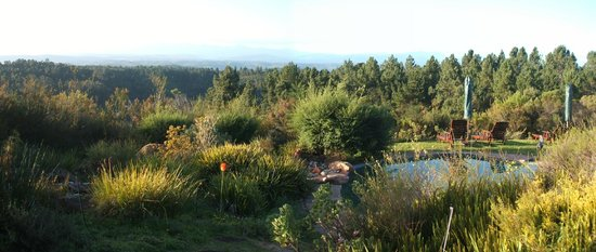 Fynbos Ridge Country House & Cottages: swimming pool