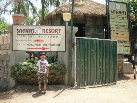 tribal dance photo de saavaj resort  sasan gir tripadvisor