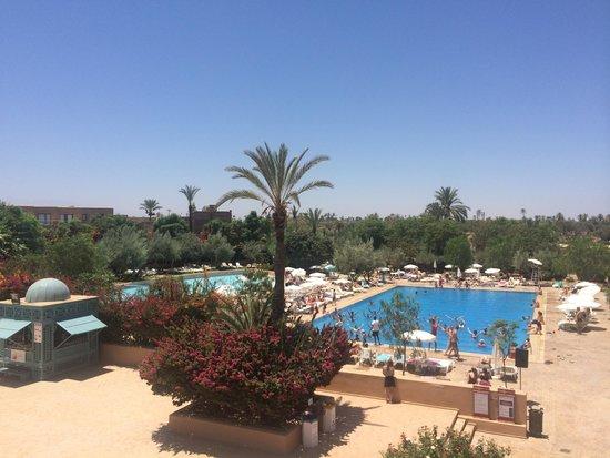 Club Marmara Madina : Vue sur la piscine de la terrasse du bar