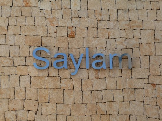 Saylam Suites: entrance.