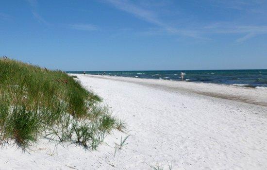 Dueodde Beach: White sand in Denmark