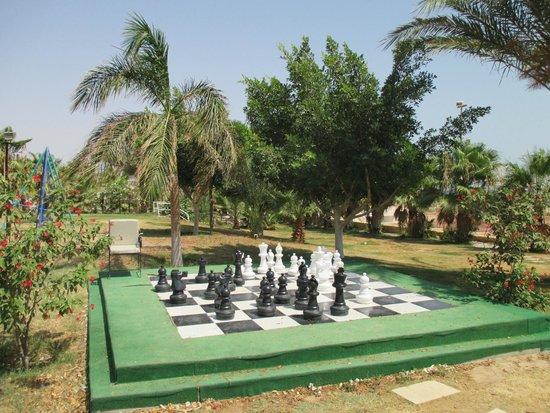 Coral Beach Resort : красивый уголок с шахматами