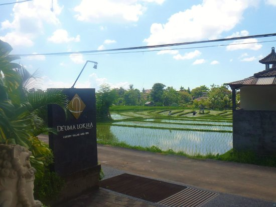 De Uma Lokha Luxury Villas and Spa: Main Entry
