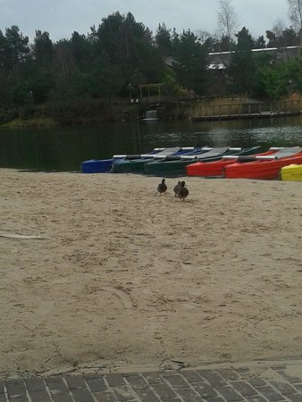 Centre Parcs Whinfell Forest: The little beach by the shopping center.
