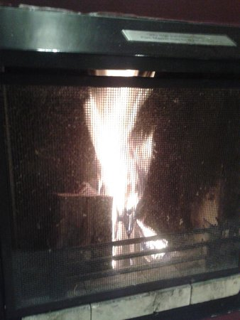 Centre Parcs Whinfell Forest: The fire in our living room.