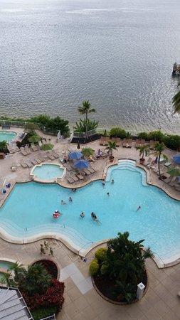 Sanibel Harbour Marriott Resort & Spa : Pool