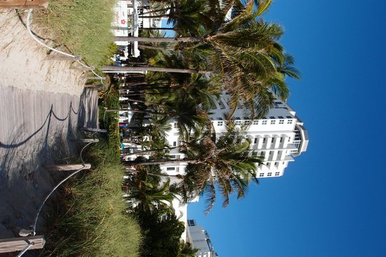 Loews Miami Beach Hotel: path from the beach to the pool/hotel