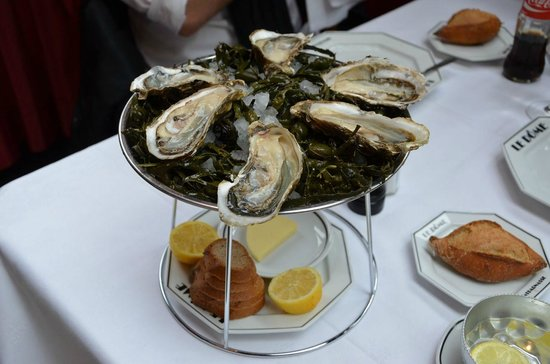 Le Dome: Oysters