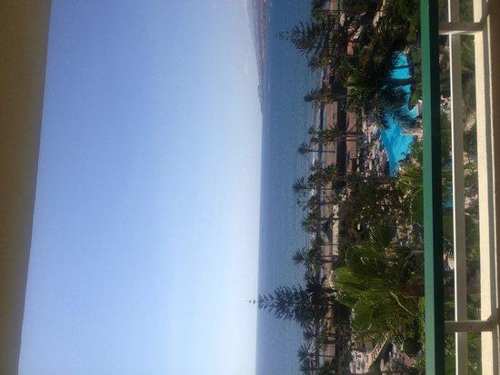 H10 Las Palmeras: View
