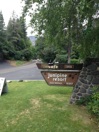 Junipine Resort