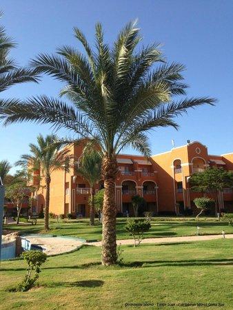 Caribbean World Resorts Soma Bay: grounds