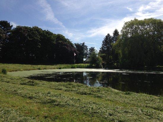Whitethorn Farm Bed & Breakfast: Fishing Pool