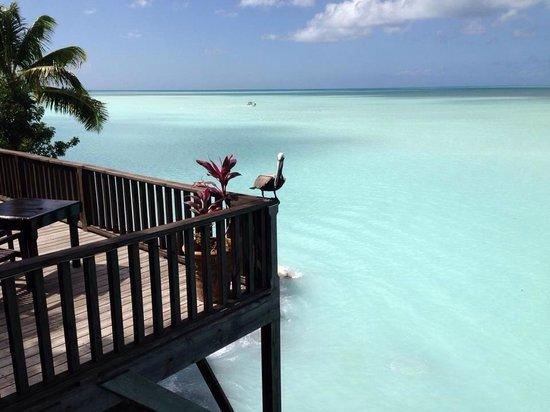 COCOS Hotel Antigua: Questa è la vista mozzafiato dalla terrazza del bar