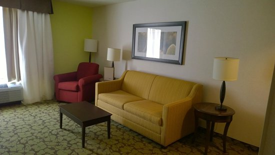 Hilton Garden Inn Salt Lake City Airport : Living room