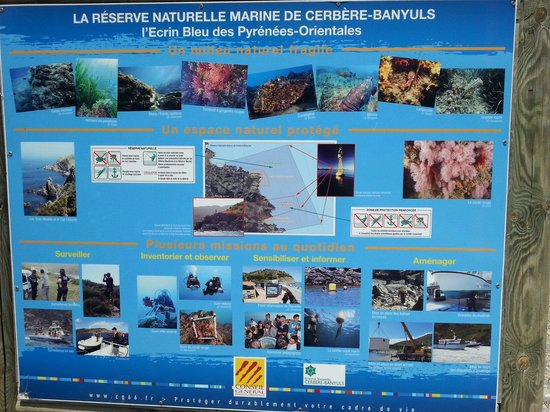 Le Sentier Sous-Marin de Cerbere-Banyuls