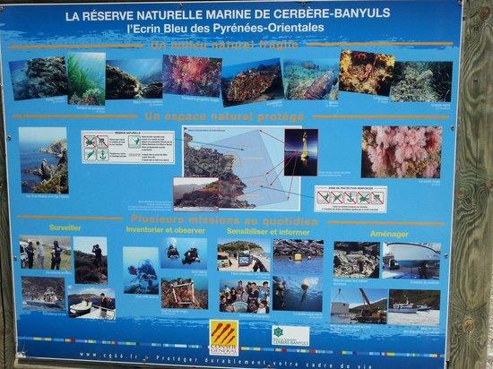 Cerbere, France : Panneau indicatif