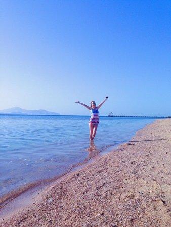 Rixos Sharm El Sheikh : On the beach