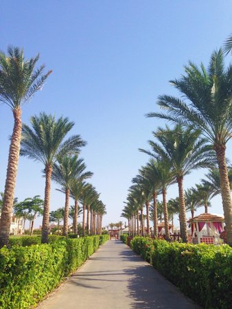 Rixos Sharm El Sheikh: Promenade along the beach