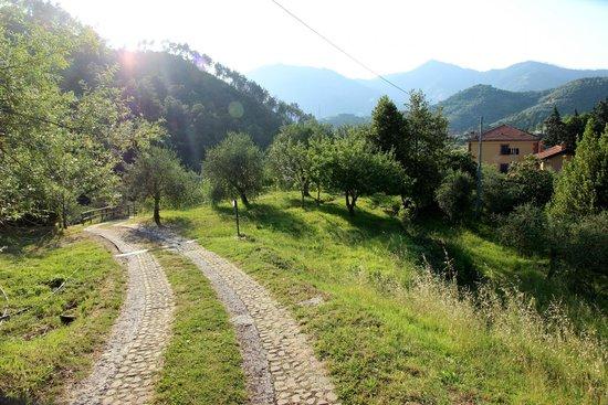 Agriturismo Villanova: טיול בוקר