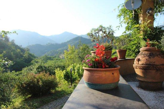 Agriturismo Villanova: נוף ממרפסת חדר האוכל