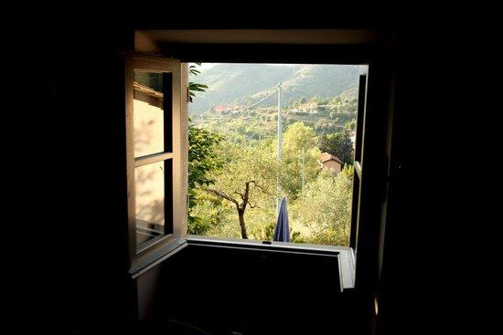 Agriturismo Villanova: נוף מהחדר