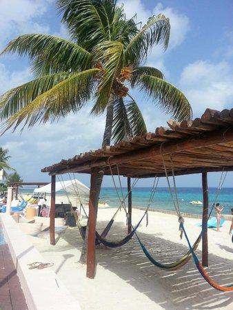El Cozumeleno Beach Resort : Hammocks