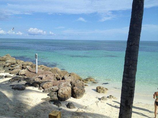 Memories Grand Bahama Beach and Casino Resort : View from Bella's restaurant!!