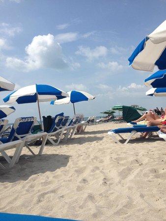 Gale South Beach : Beach !