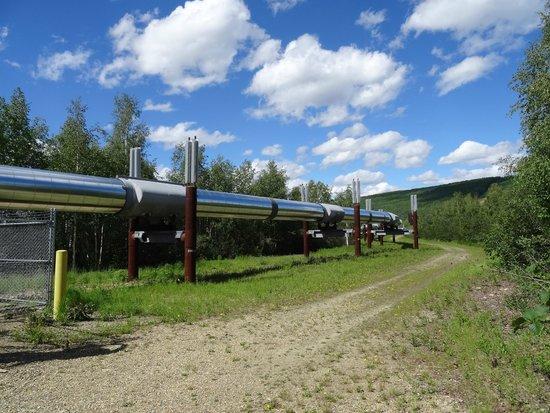 Gold Dredge 8 : Pipeline
