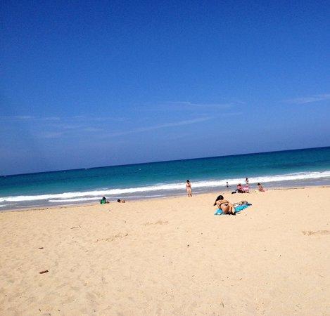 Ocean Park Beach: This is January!