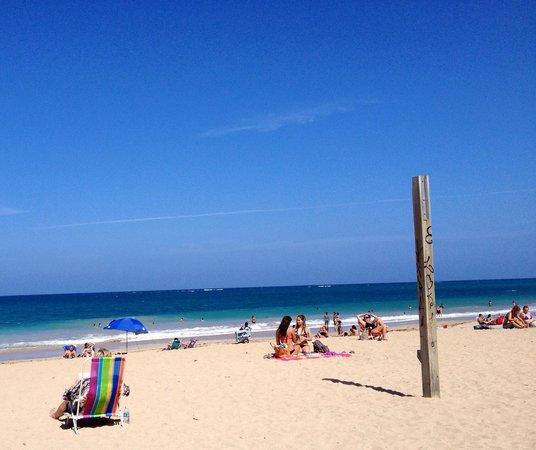 Ocean Park Beach: A beautiful day at the beach in Puerto Rico.