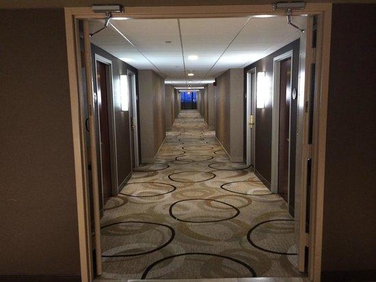 Revere Hotel Boston Common: Hallway