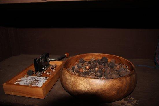 Hale Huanani Bed and Breakfast: Macadamianüsse mit Nussknacker