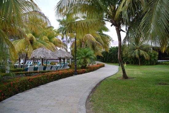 Hotel Riu Montego Bay: Pathway near pool