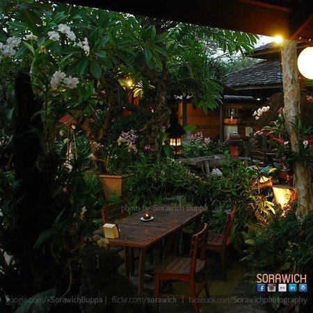 Kupu Kupu Barong: ร้านต้นไม้เยอะมาก
