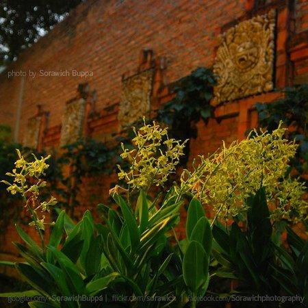 Kupu Kupu Barong: ดอกไม้และลายที่กำแพง