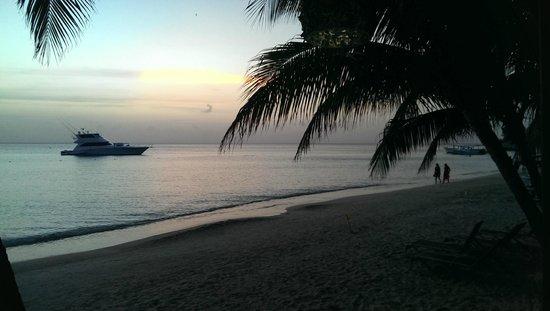 Bananarama Beach and Dive Resort: night at Bananarama